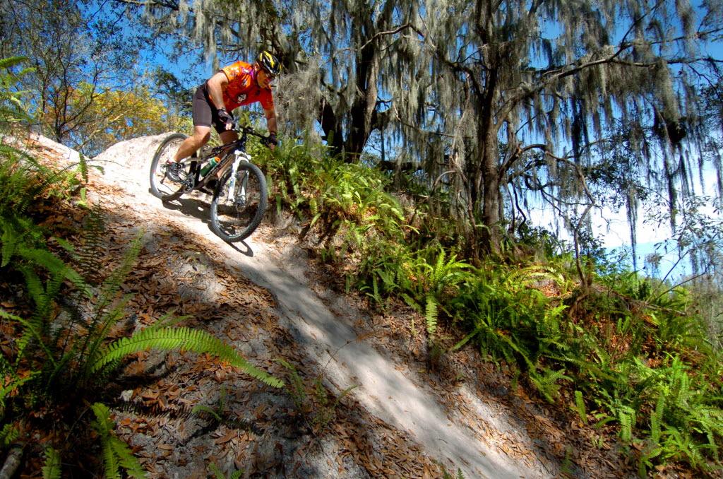 mountain biking in Alafia